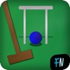 Croquet Pro 2 - 6 Wicket, Association Style toy balls