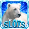 Polar Bear Free Slots Casino