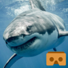 VR REALITY SHARKS - VR Apps with Google Cardboard