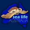 Sea Life Australia