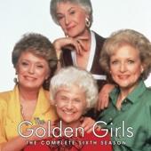 The Golden Girls, Season 6 - The Golden Girls Cover Art