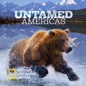 Untamed Americas - Untamed Americas Cover Art