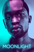 Moonlight - Barry Jenkins Cover Art