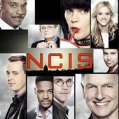 NCIS, Staffel 15