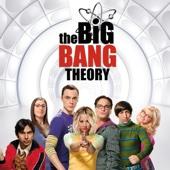 The Big Bang Theory, Saison 9 (VF)