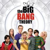 The Big Bang Theory, Saison 9 (VOST)