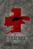 Harry Sanna - Trauma  artwork