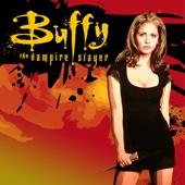 Buffy the Vampire Slayer, Season 1 - Buffy the Vampire Slayer Cover Art