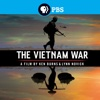 The Vietnam War: A Film By Ken Burns and Lynn Novick - Déjà Vu (1858-1961)  artwork
