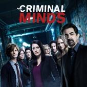 Criminal Minds - Criminal Minds, Season 13  artwork
