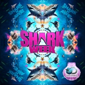 Shark Week, Season 28 - Shark Week Cover Art