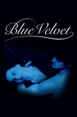 Blue Velvet Full Movie Legendado