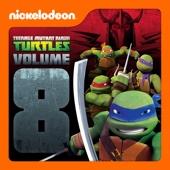 Teenage Mutant Ninja Turtles, Vol. 8 - Teenage Mutant Ninja Turtles Cover Art