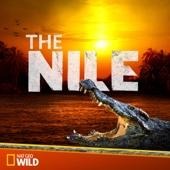 The Nile - The Nile Cover Art