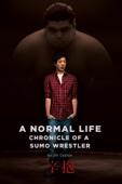 Jill Coulon - A Normal Life: Chronicle of a Sumo Wrestler (辛抱)  artwork