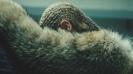 Beyoncé - Lemonade Film  artwork