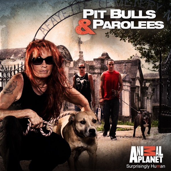 Pitbulls and parolees pay per episode
