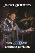 Juan Gabriel - Mis 40 En Bellas Artes  artwork