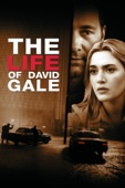 The Life of David Gale Full Movie