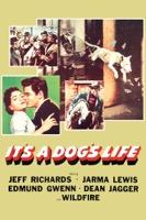 It's a Dog's Life (iTunes)