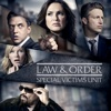Law & Order: SVU (Special Victims Unit) - Net Worth  artwork