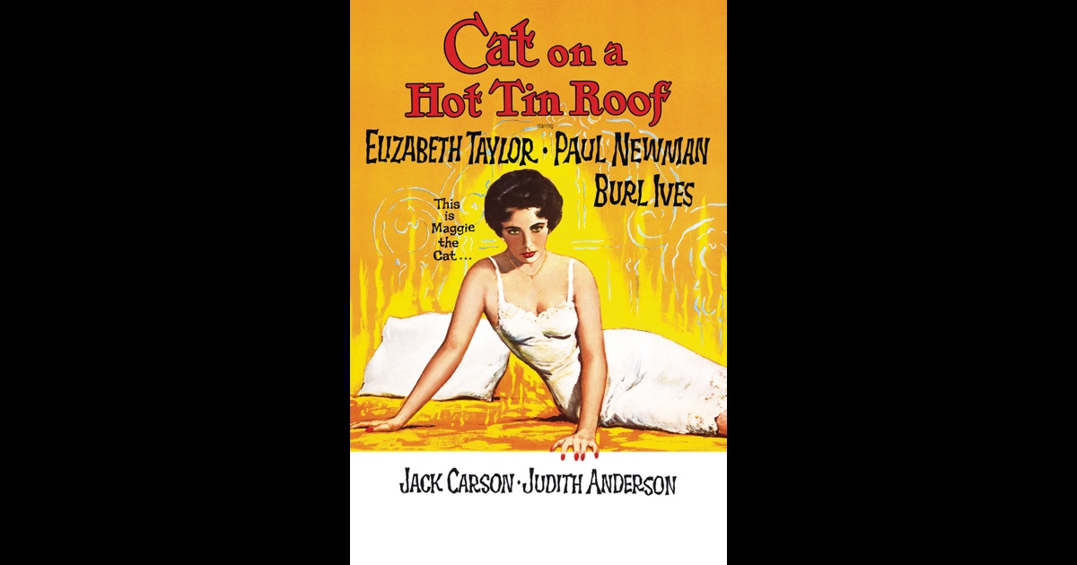 cat essay hot roof tin Cat on a hot tin roof is a tragicomedy there is a deep meaning shielded by bits and pieces of humor which best symbolizes how actual day to day activities come to pass.
