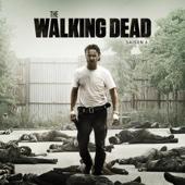 The Walking Dead, Saison 6 (VF)