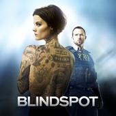 Blindspot, Saison 1 (VF)